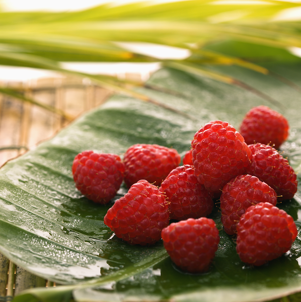 Raspberries SuccessMatch